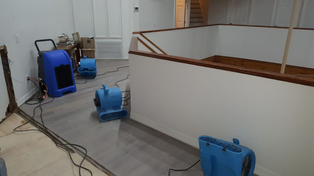 water damage restoration drying image