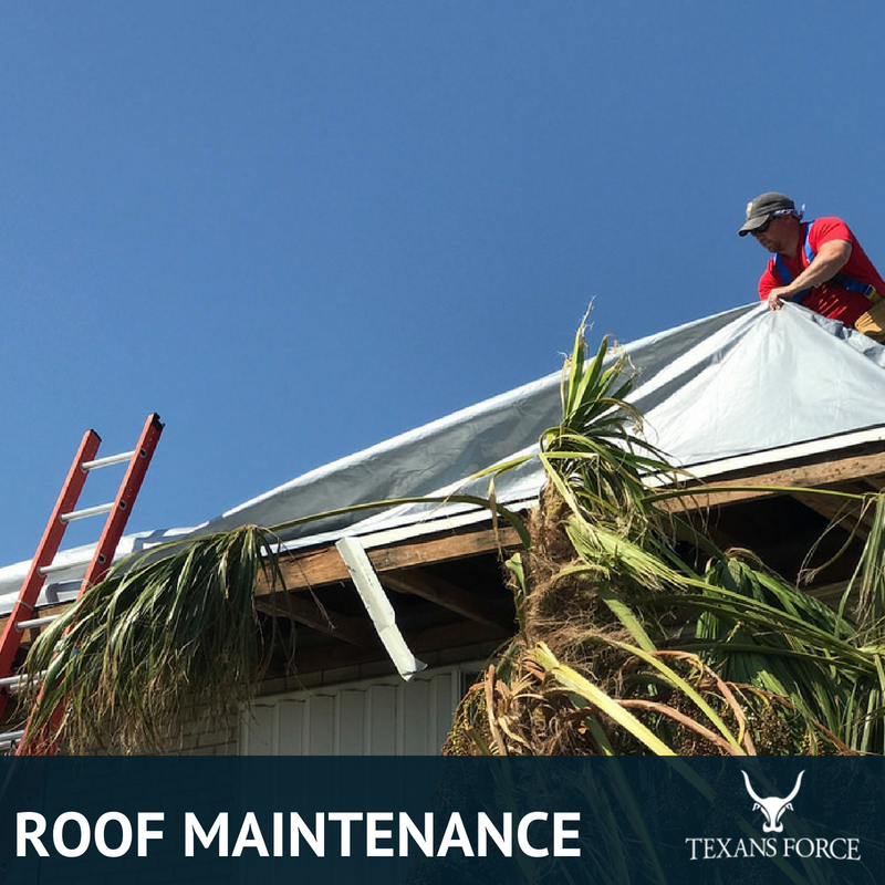 roof maintenance houston tx